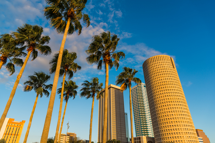 Palm trees and skyscrapers in downtown Tampa at sunset. Florida, USA